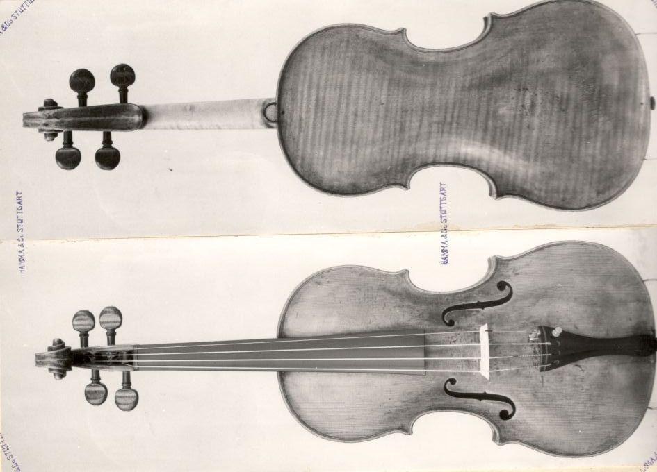 Cynthia freivogel violin